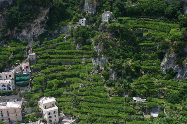 I terrazzamenti della Costiera amalfitana | Cielo Mare Terra - La ...