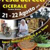 Una locandina sulla Festa dei Ceci di Cireale